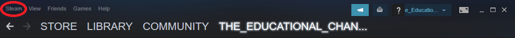 why does steam take so long to start